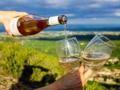 Katalonia degustacja win