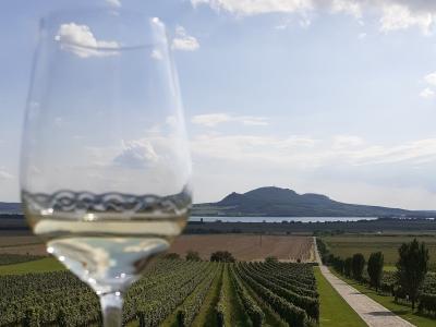 Wycieczka na wino do Czech