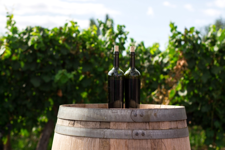 Wycieczki winiarskie dla grup