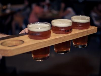 Wyjazd piwny na Morawy. Wycieczka na piwo z Katowic i Krakowa