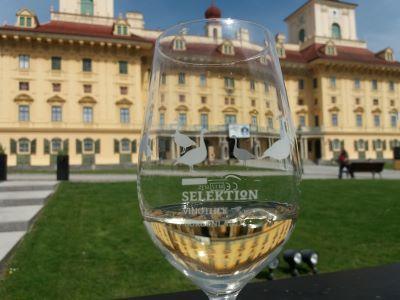 Podróż z winem do Austrii