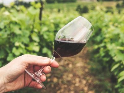 wycieczki-winiarskie-rioja-hiszpania