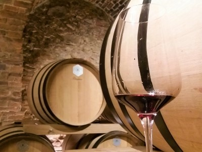 Wycieczka winiarska na Słowację
