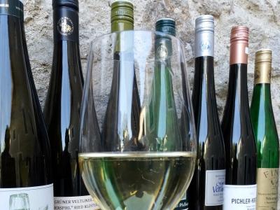 Wyjazd firmowy na wino do Austrii, lampka wina na tle butelek z winem