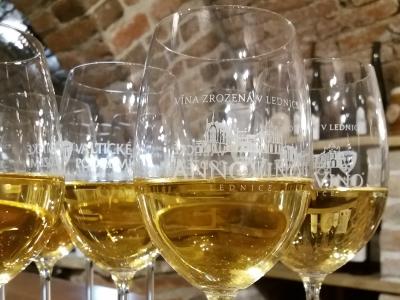 Wyjazd integracyjny na piwo i wino. Lampki wina w piwniczce winiarskiej