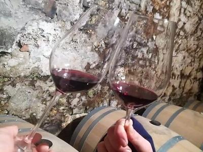 Wycieczka na wino na Słowację. Degustacja win w piwnicy winiarskiej
