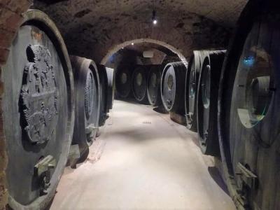 Piwnica z beczkami wina - wycieczka winiarska na Słowację