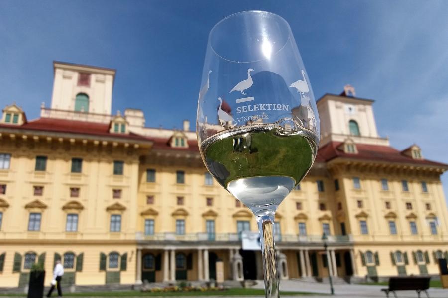 Wycieczki do Austrii. Lampka wina w Eisenstadt