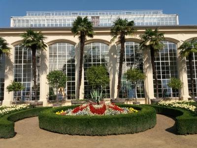 Wycieczka do Kromieryża. Palmiarnia w ogrodzie kwiatowym
