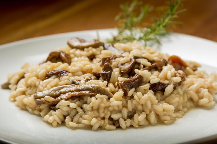 Wycieczki do Włoch z gastronomia w tle - porcja risotto